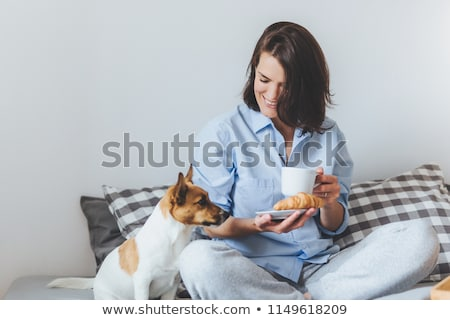 Smiling delightful brunette female in pyjamas has breakfast in bed, tastes delicious croissant with  Stock photo © vkstudio