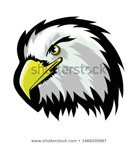 White American North Bald Eagle Head Tattoo Design. Logo Prey Bird Isolated on White Background Stock photo © Valeo5