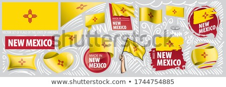 Vector set of flags of the American state of New Mexico in different designs Stock photo © butenkow