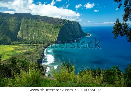 Stream on the Big Island of Hawaii Stock photo © photoblueice