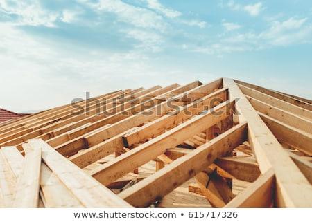 windows · homem · furacão - foto stock © photography33