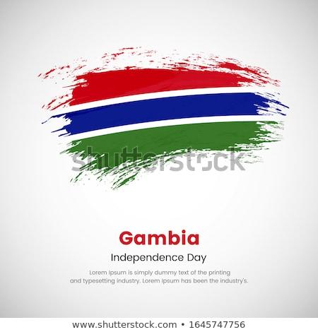 Grunge Gambia flag Stock photo © oxygen64