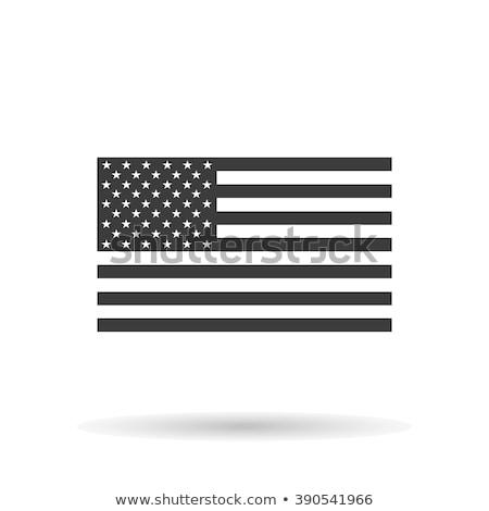 elegante · americano · dia · vetor · abstrato · estrela - foto stock © pinnacleanimates