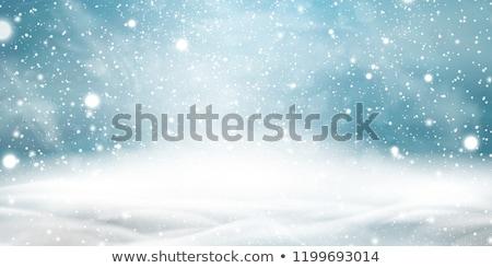 Schnee Gartengestaltung Natur Hintergrund Kunst Malerei Stock foto © zzve