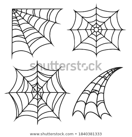Halloween icon set with spidernet, vector Stock photo © beaubelle