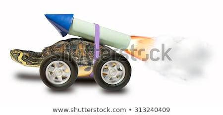 żółwia rakietowe szczęśliwy morza zielone uruchomić Zdjęcia stock © dagadu