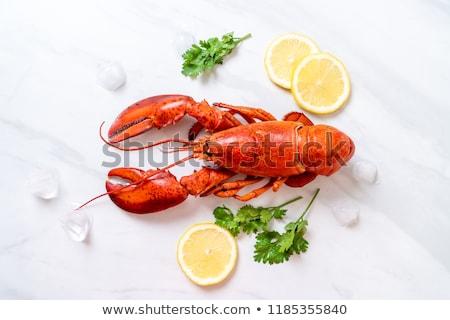 Heerlijk gekookt kreeft Rood display zeevruchten Stockfoto © hd_premium_shots