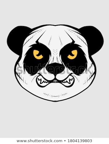 Bear panda head animal symbol for mascot or emblem design, vector illustration for t-shirt. Stock photo © Hermione