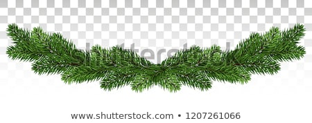 Christmas garland with evergreen branches Stock photo © AndreyKr