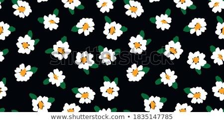 cor · flor · primavera · ilustração · floral - foto stock © hermione