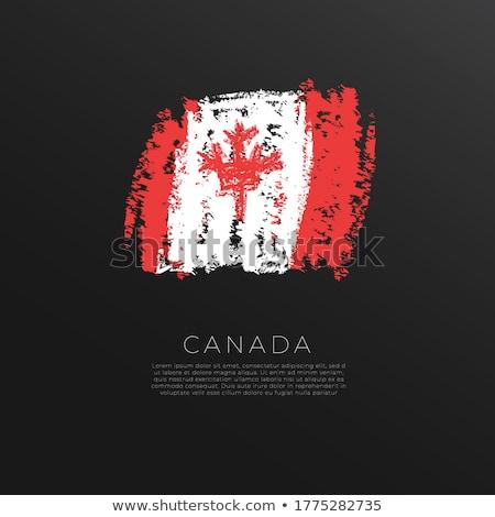 флаг Канада темы Идея дизайна текстуры Сток-фото © kiddaikiddee