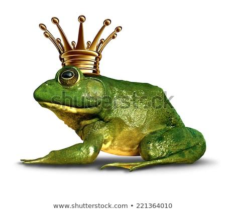 kikker · prins · klein · goud · kroon - stockfoto © lightsource
