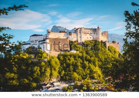 hohensalzburg castle salzburg austria stock photo © backyardproductions