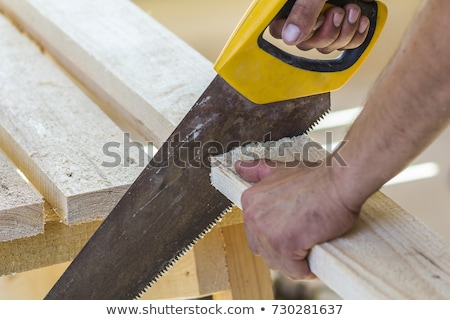 Manual saw cutting wooden timber Stock photo © LoopAll
