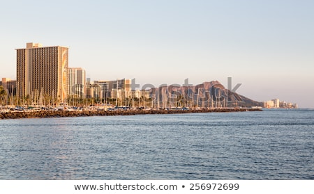 panorama · waikiki · Honolulu · Hawaii · skyline · parco - foto d'archivio © jarin13