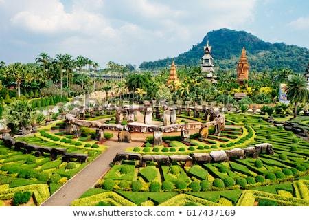 熱帯 · 植物園 · タイ · 細部 · 嵐の · 天気 - ストックフォト © dashapetrenko