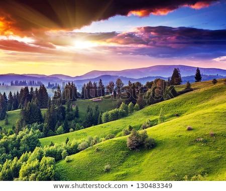rural summer landscape before the storm stock photo © zeffss