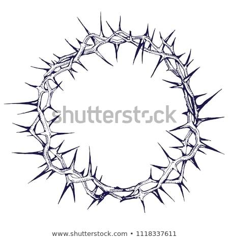atravessar · coroa · religião · cristão · bom · ilustração - foto stock © enterlinedesign