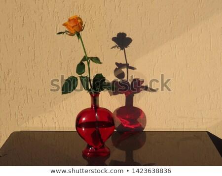 öreg piros citromsárga rózsák szív alak szív Stock fotó © compuinfoto