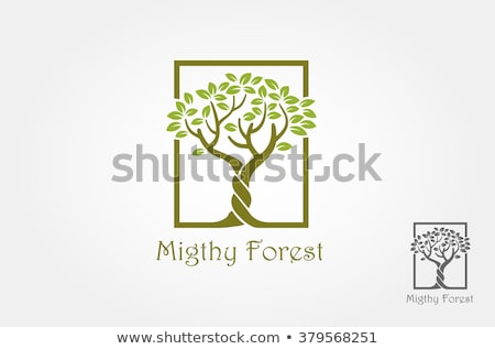 two trees in line Stock photo © simply