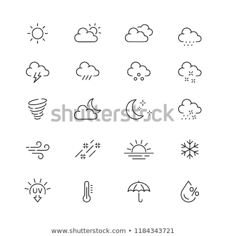 Icon with windy weather Stock photo © bluering
