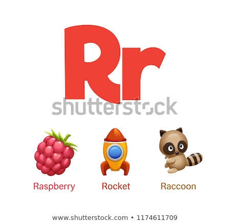 Flashcard letter R is for raspberry Stock photo © bluering