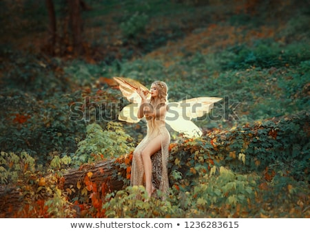 vrouw · elf · kostuum · glimlachende · vrouw · geïsoleerd - stockfoto © vilevi