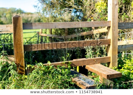 trancado · cerca · porta · segurança · chave - foto stock © hofmeester
