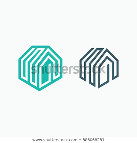mono line house logo design for real estate company Stock photo © SArts