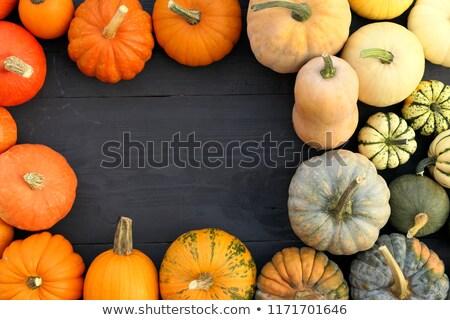 здорового · тыква · семян · красочный · осень - Сток-фото © rrvachov