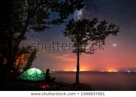 Lány víz csillagos ég illusztráció Stock fotó © adrenalina