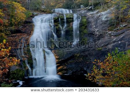Bald River Falls in Tennessee, USA. stock photo © GreenStock