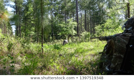Turcja hunter pracy polu połączenia Zdjęcia stock © StephanieFrey