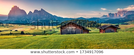 picturesque village in the Alps Italy Stock photo © OleksandrO
