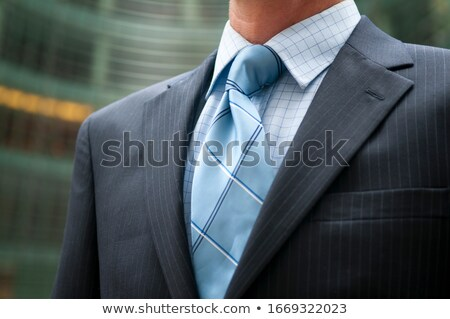 Businessmen standing in courtyard Stock photo © IS2