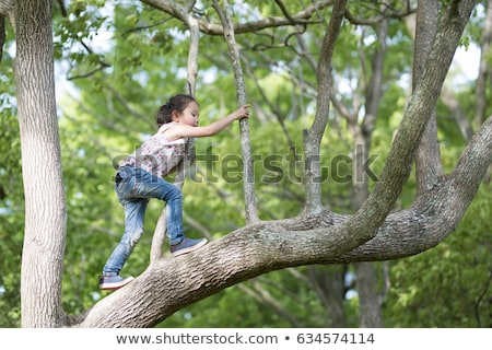 Children climbing tree in forest Stock photo © IS2