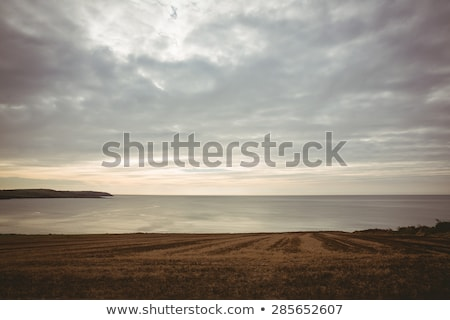 vector · zee · avond · zonsondergang · zon · illustratie - stockfoto © sidmay