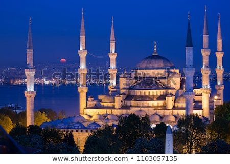 Azul mesquita noite istambul Turquia Foto stock © Givaga