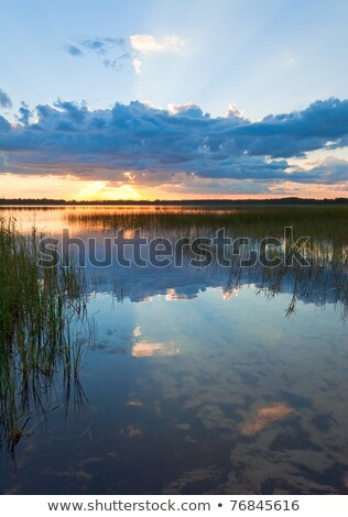 yaz · göl · gün · batımı · görmek · bulut · yansımalar - stok fotoğraf © wildman