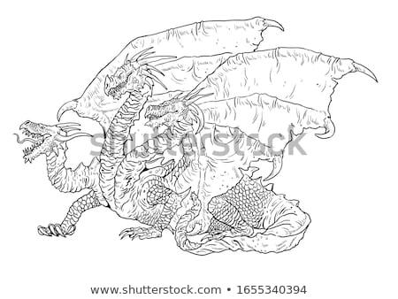 Cartoon Dragon Silhouette Crazy Stock photo © cthoman