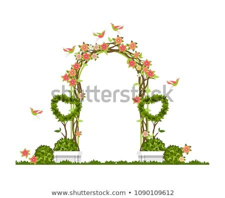Bruiloft boog stoelen gras park groen gras Stockfoto © ruslanshramko