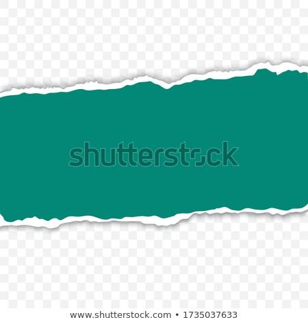green torn paper stock photo © cammep