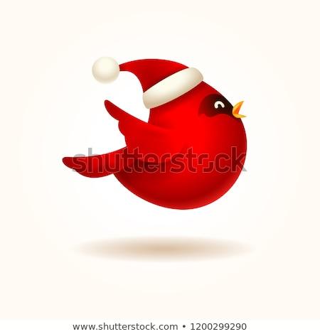 Рождества Cute мало красный птица Cap Сток-фото © ori-artiste