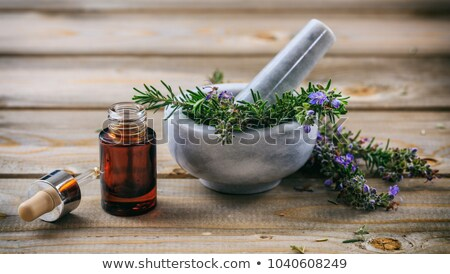a bottle of rosemary essential oil with fresh blooming rosemary stock photo © madeleine_steinbach