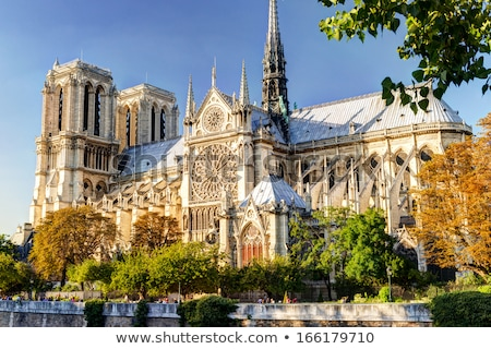 Catedral de Notre Dame Paris França vista lateral árvore folhas Foto stock © neirfy