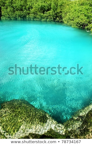 verde · turquesa · agua · hermosa · Caribe · mar - foto stock © lunamarina