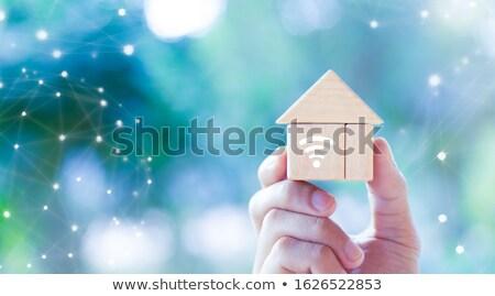 Kéz tart fából készült otthon automatizálás ikon Stock fotó © AndreyPopov
