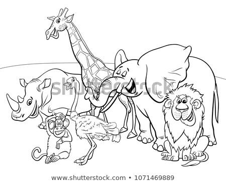 grappig · komische · dier · groep · cartoon - stockfoto © izakowski