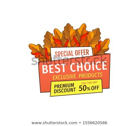 különleges · promóció · árengedmény · hálaadás · nap · poszter - stock fotó © robuart