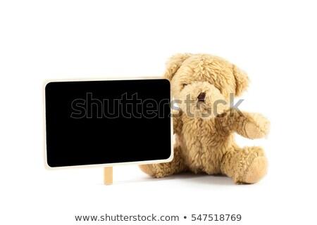 barnamedve · iskolatábla · keret · illusztráció · erdő · természet - stock fotó © colematt